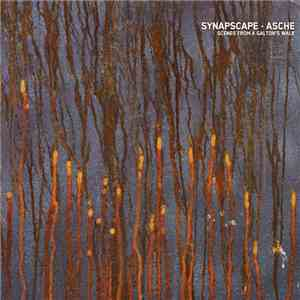 Synapscape ▪ Asche - Scenes From A Galton's Walk album FLAC